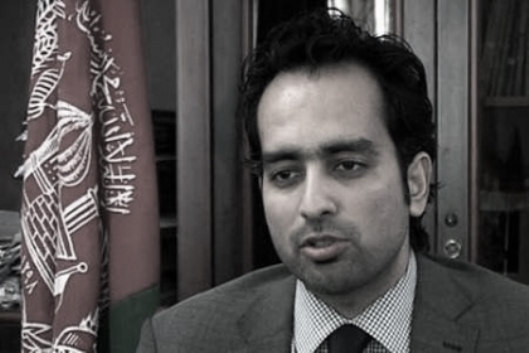 Aimal Faizi, Karzai spokesman...
